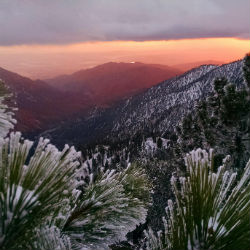 mt baldy featured